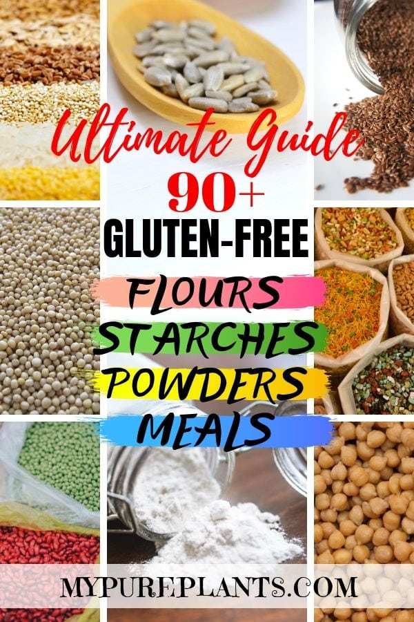 Collage of different gluten-free grains, seeds, nuts titles Gluten-free Flours Starches Powders Meals