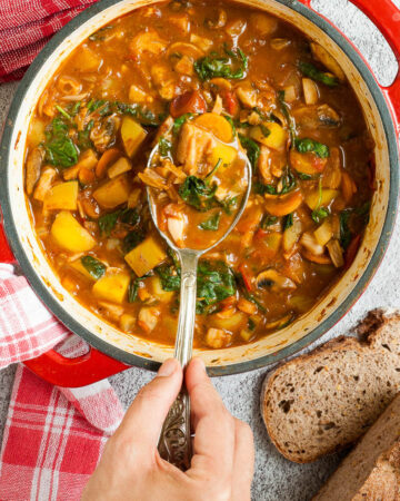Red Dutch oven from above with a stew where you can see chopped potatoes, spinach leaves, carrot slices, tomatoes, and mushroom slices. Slices of bread is next to it. A hand is holding a spoon taking some from the middle