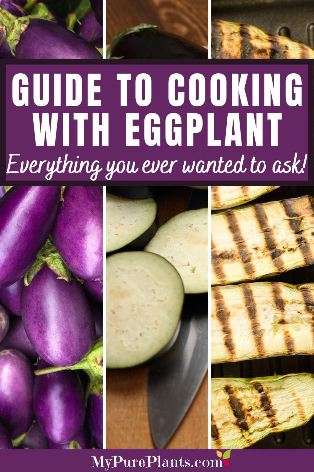 Collage of different eggplant images with a text in the middle saying Guide to cooking with eggplant Everything you ever wanted to ask