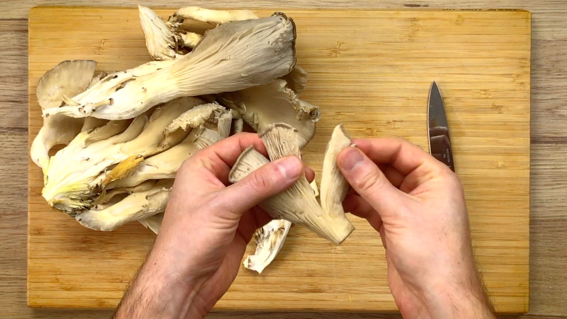 White mushrooms on a wooden cutting board. A hand is tearing apart the cap.