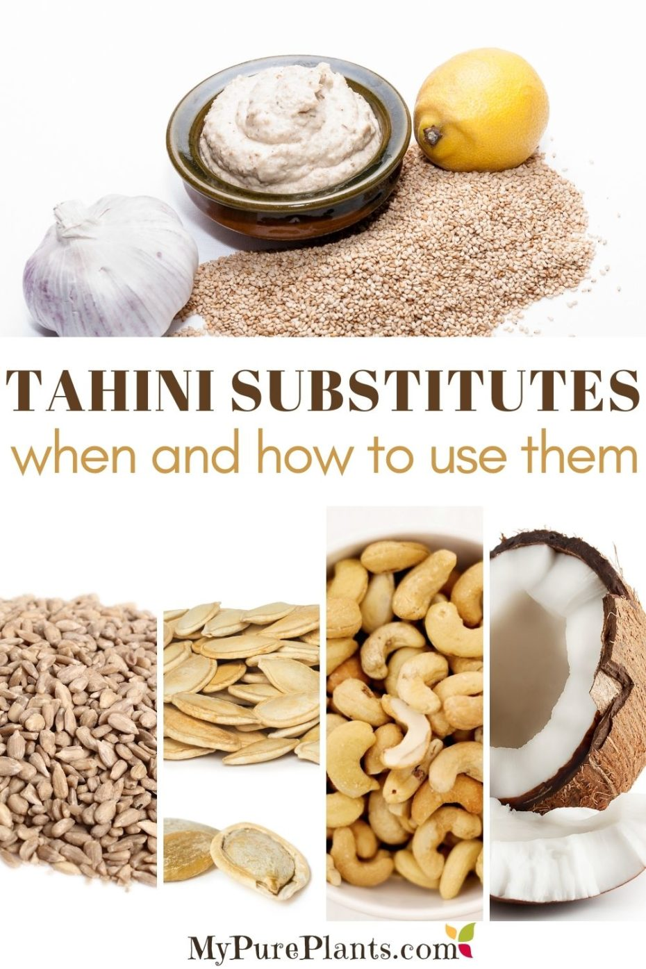 Photo collage of different nuts and seeds with a text in the middle saying tahini substitutes when and how to use them