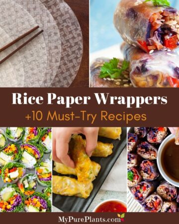 5 photo collage with colorful rice paper rolls with a text overlay in the middle saying guide to rice paper wrappers 10 must-try recipes