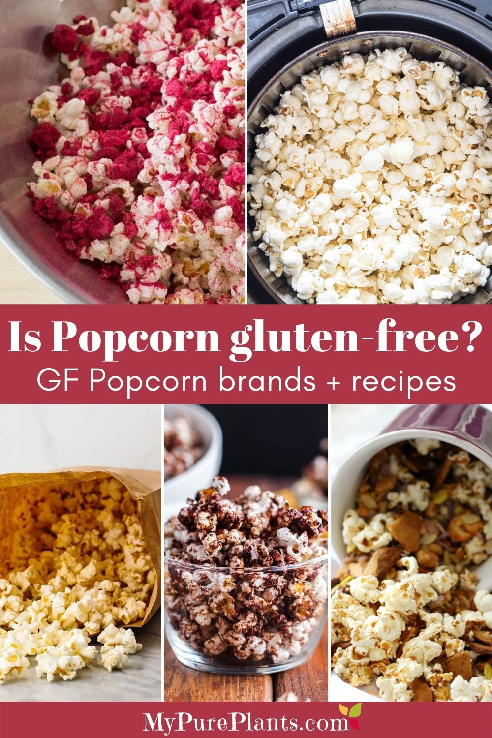 5 photo collage of different colored popcorns with an overlay text saying Is popcorn gluten-free?
